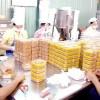 Tuyển gấp lao động cho nhà máy sản xuất bánh kẹo
