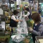 Top các đơn hàng đi Đài Loan cho nữ hot nhất và lương cao nhất